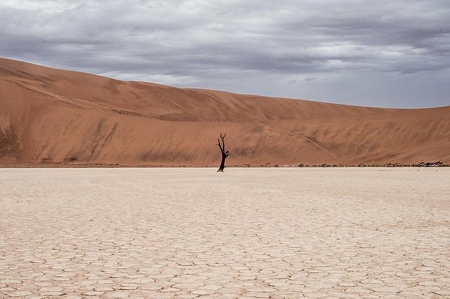 desert-landscape-1081829_640