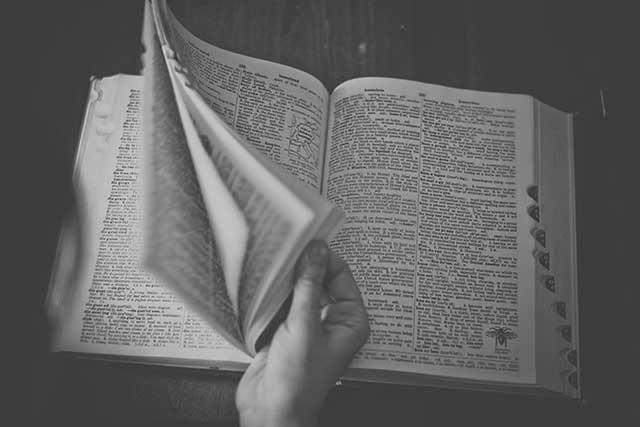 大学生や社会人におすすめの電子辞書