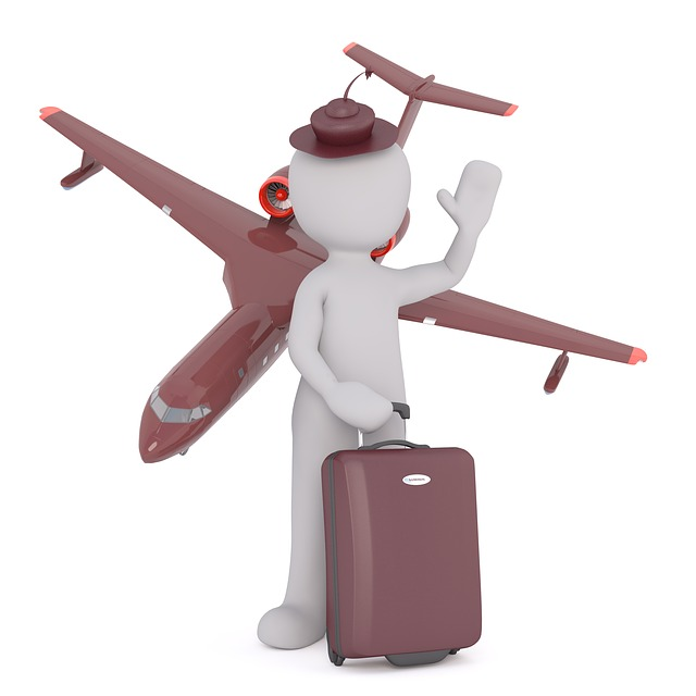 cabin attendant と flight attendant の違い:語い